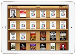 Apple's Last Chance to Win eBook Conspiracy Case Lies with Securing Supreme Court Hearing Antitrust Apple