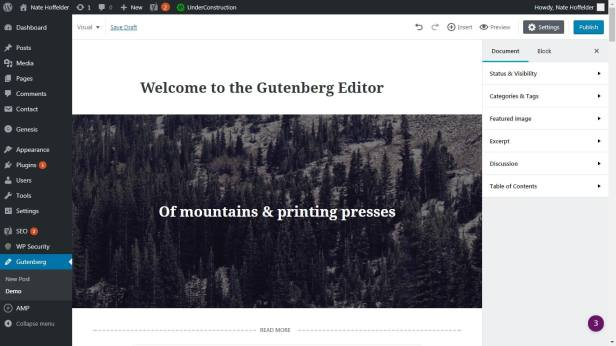 Attention, Authors: Wordpress 5.0 Will Change Everything You Know About Wordpress blog maintenance Web Publishing
