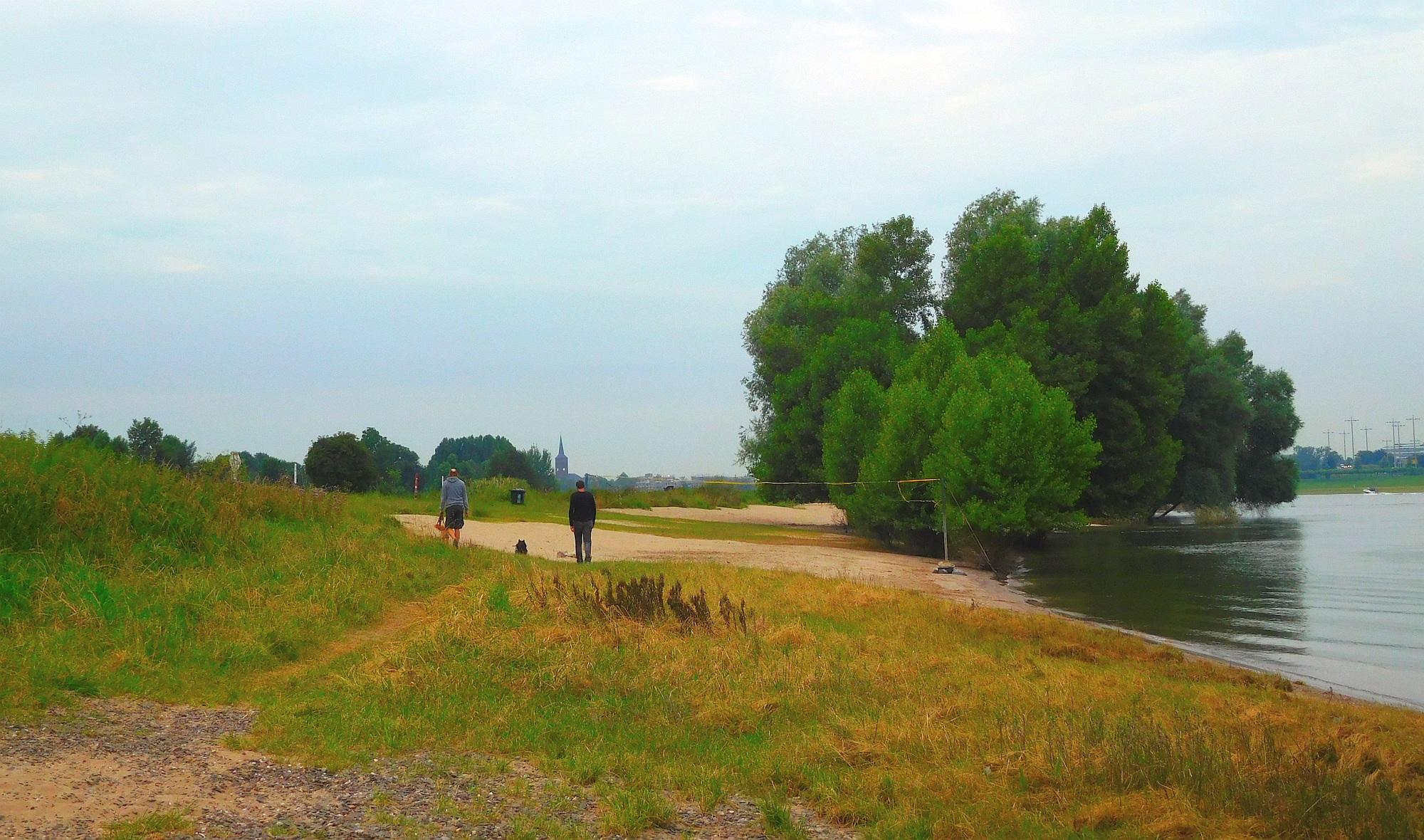 Düsseldorfer Rheinstrände: Der Paradiesstrand