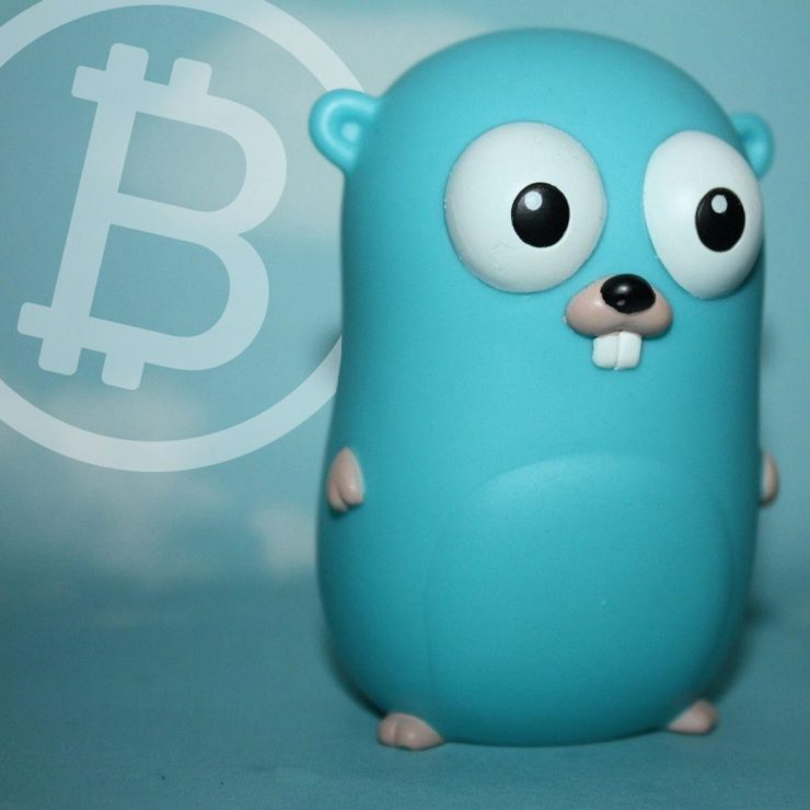 Bitcoin Cash Developers Launch Beta Bchd Client Written in Golang