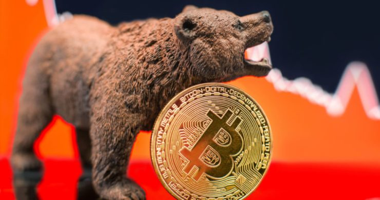 bitcoin price bear crypto vinny lingham