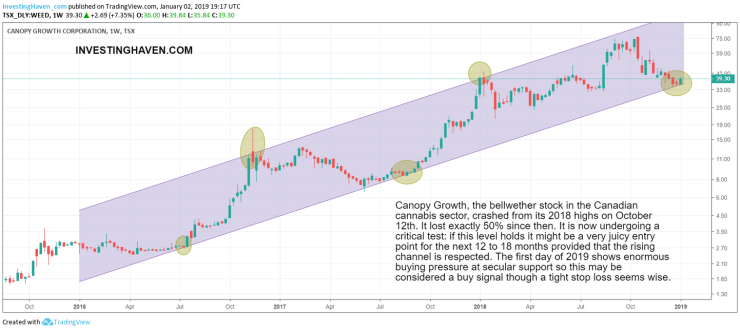 cannabis stock bull market 2019