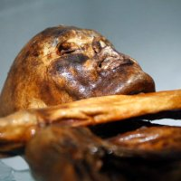 Otzi The Iceman 'Speaks' After 5,000 Years Of Silence