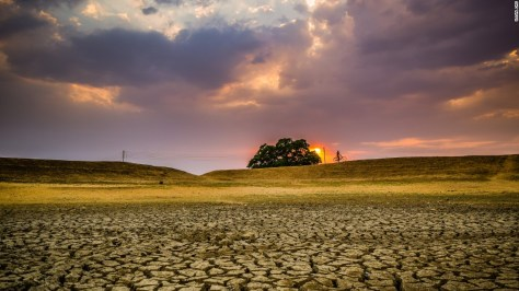 """Photo: Ujjal Das, India: """"The pic was taken in Puruliya District of West Bengal. This is a drought-prone area and in summertime the whole district becomes dry creating water problem."""""""