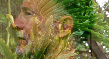 self-portrait_vegetable