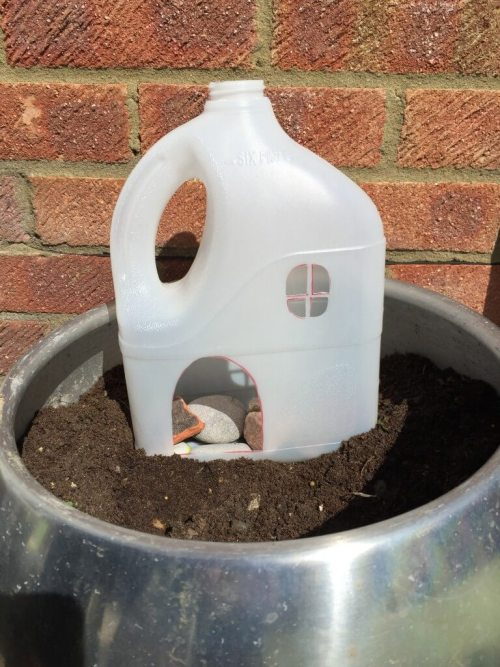 fairy garden milk bottle