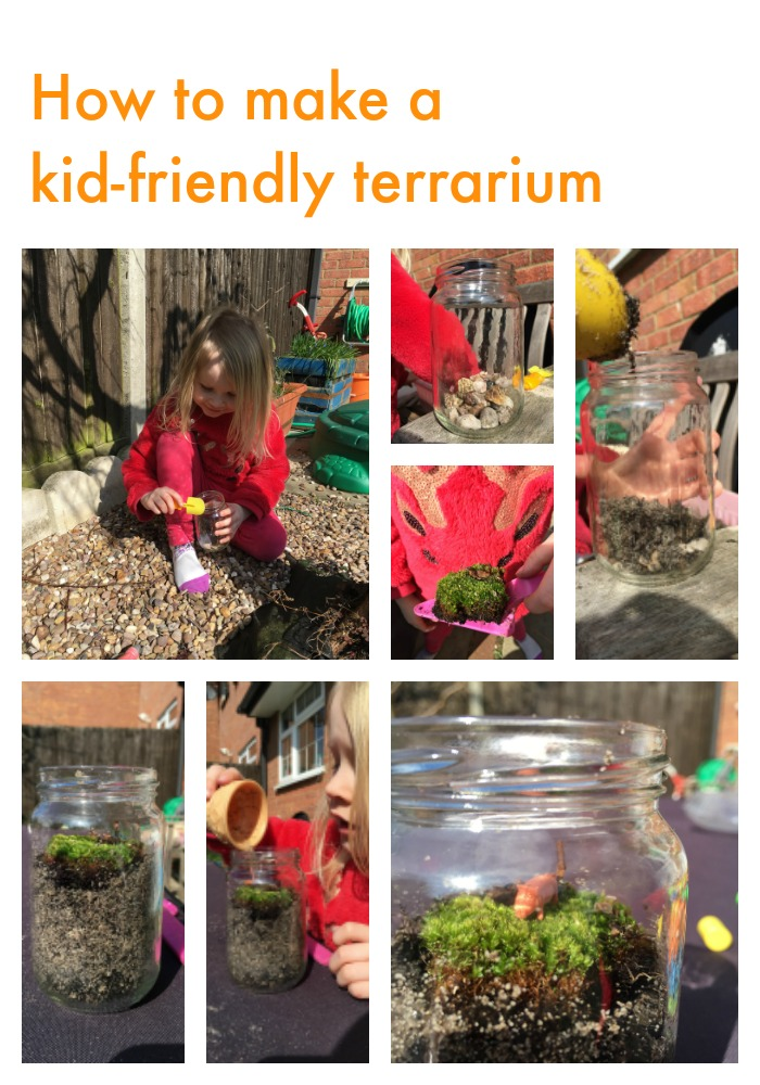 viusual guide on how to make a kid-friendly terrarium