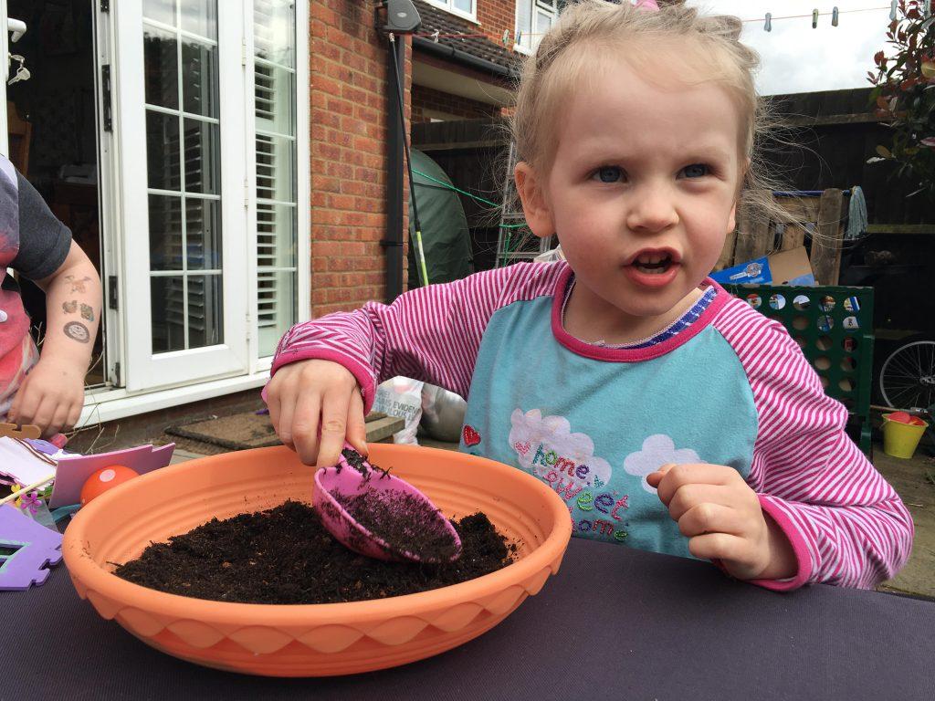 grow a fairy garden