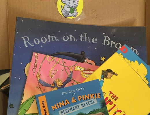 WILF books subscription box for kids