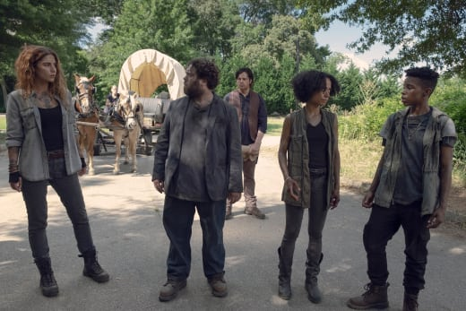 A New Group - The Walking Dead