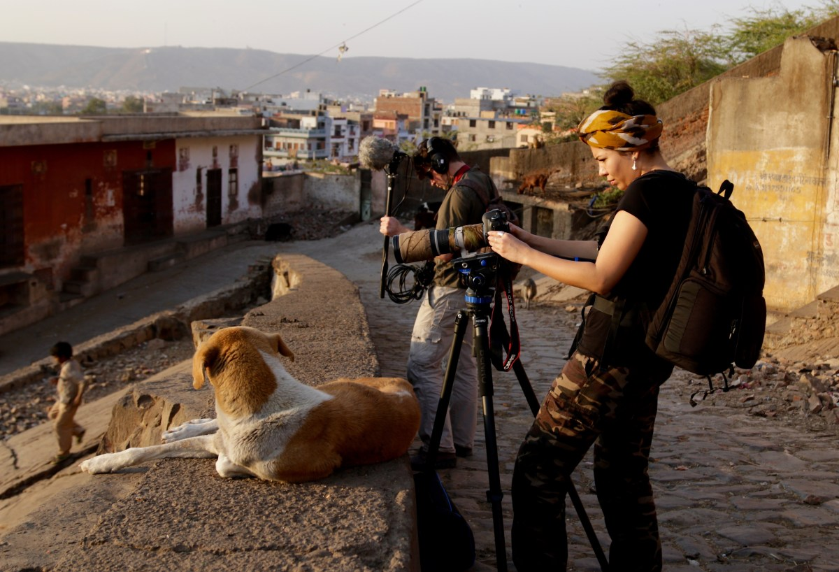 wildlife-filmaking-passion-inkline