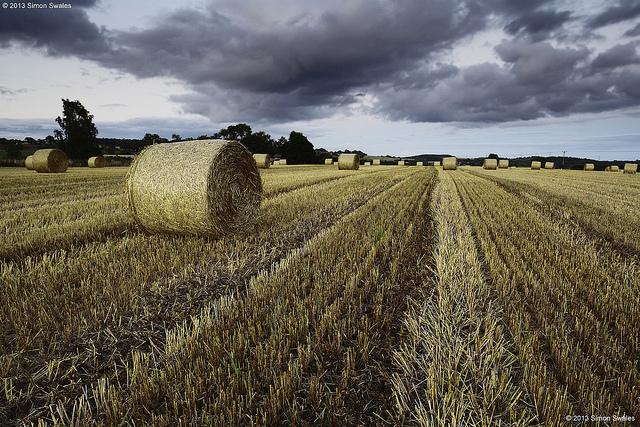 agriculture Europe pesticide INKLINE