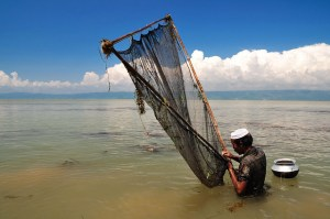 Bangladesh orders two-month ban on fishing to save key species