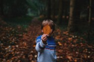 boy looking at leaf