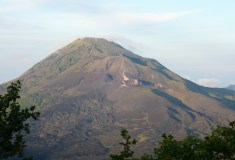 kintamanibatur_00007