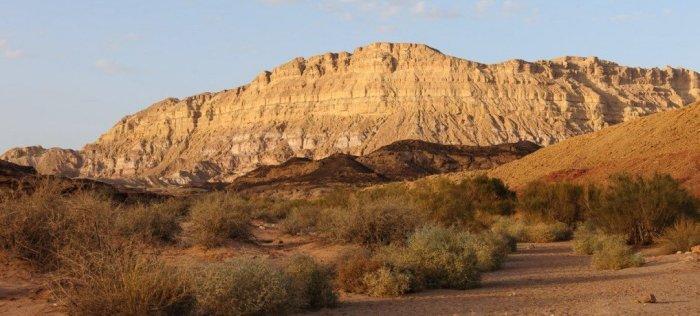 Mt. Ardon