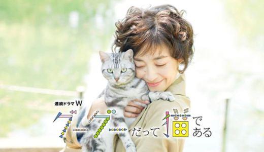 グーグーだって猫である(宮沢りえ主演)|ドラマの無料動画を1話〜最終回までフル視聴する方法を調査!