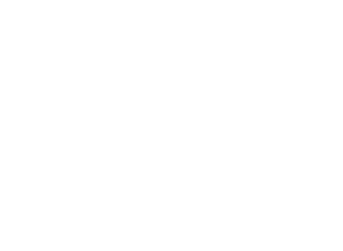 Logo The Journey Of Your Lifetime