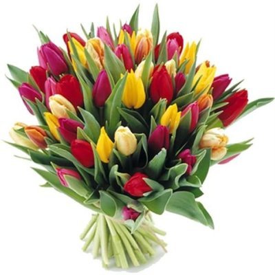 tulip-bouquet-large-tulip-flower-bouquet-mothers-day-flowers-the-little-flower-shop-florist-london-brixton-flowers-clapham