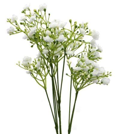 gypsophila-flower-white-flowers-bouquet-builder-the-little-flower-shop-build-a-bouquet
