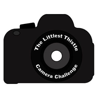 Camera Challenge Wrap Up