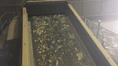 Trommel Fines Recycling Issue Air Separator