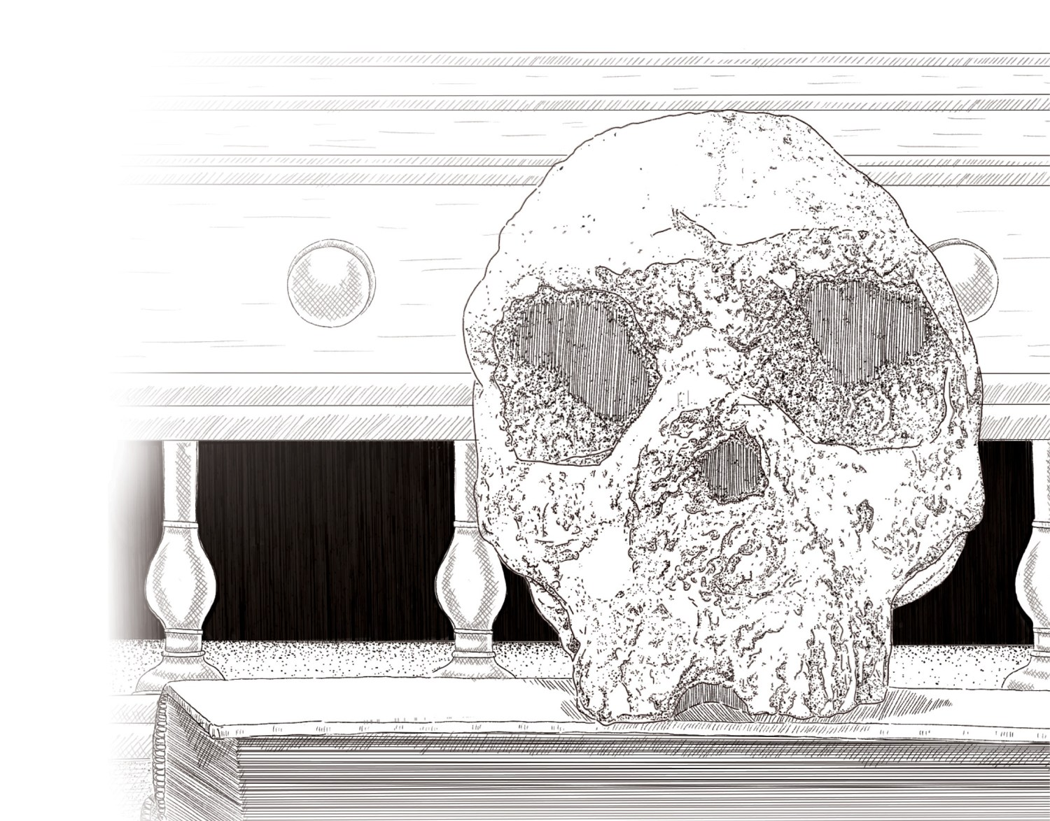Above This drawing depicts the Forbes' Quarry skull (also known as Gibraltar 1), the first adult Neanderthal remains ever discovered. The skull was found in Gibraltar in 1848 eight years before the type specimen that gave Neanderthals their name was discovered in the Neander Valley, Germany and came from a woman aged at least 40. Today, it is held by the Natural History Museum in London.