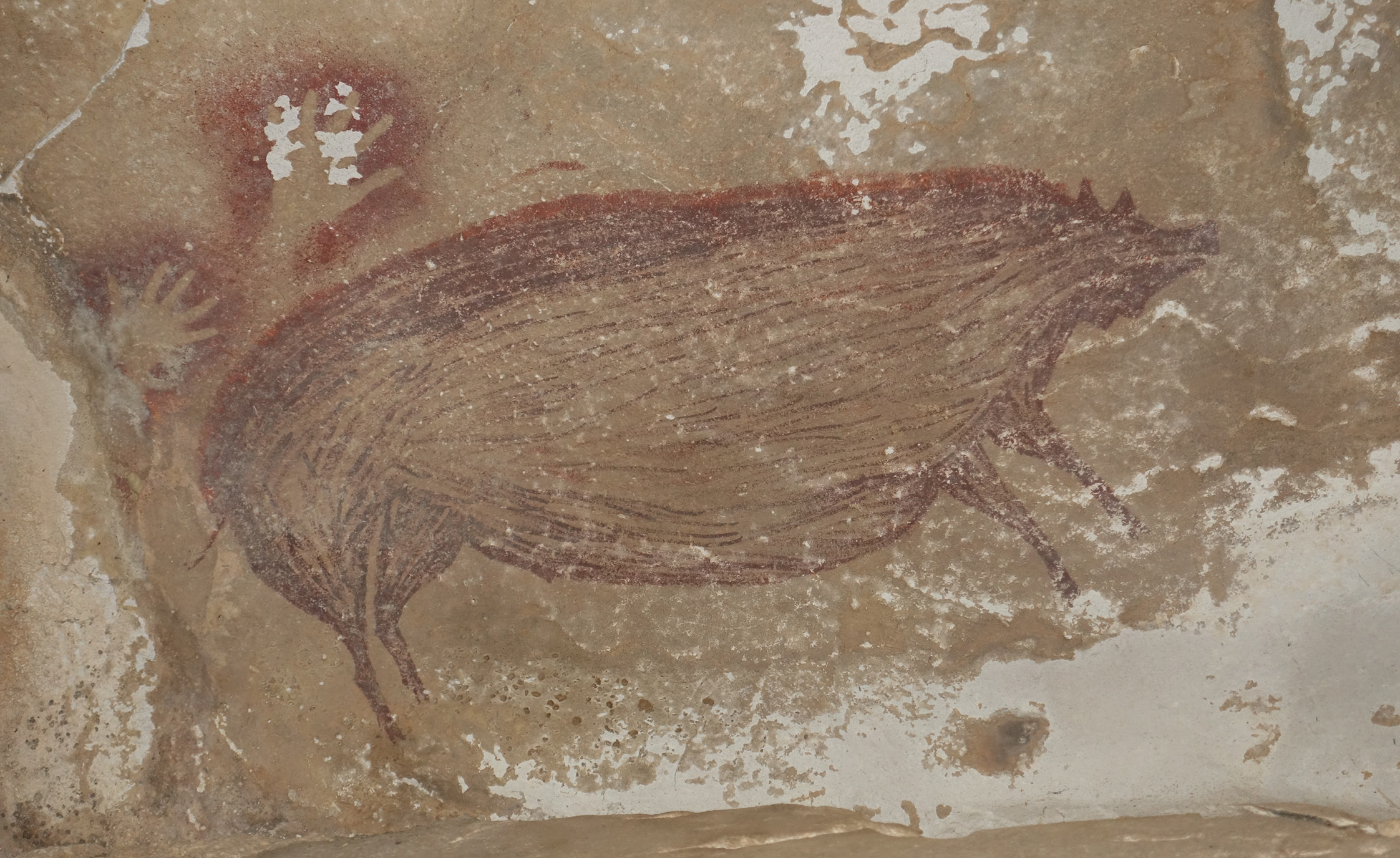 Indonesia's oldest cave art discovered