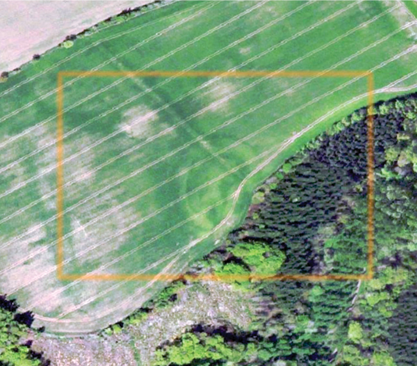 Below This aerial photograph contains hints of what appears to be a previously unknown hillfort in the Lammermuir Hills, identified during the AoF project.