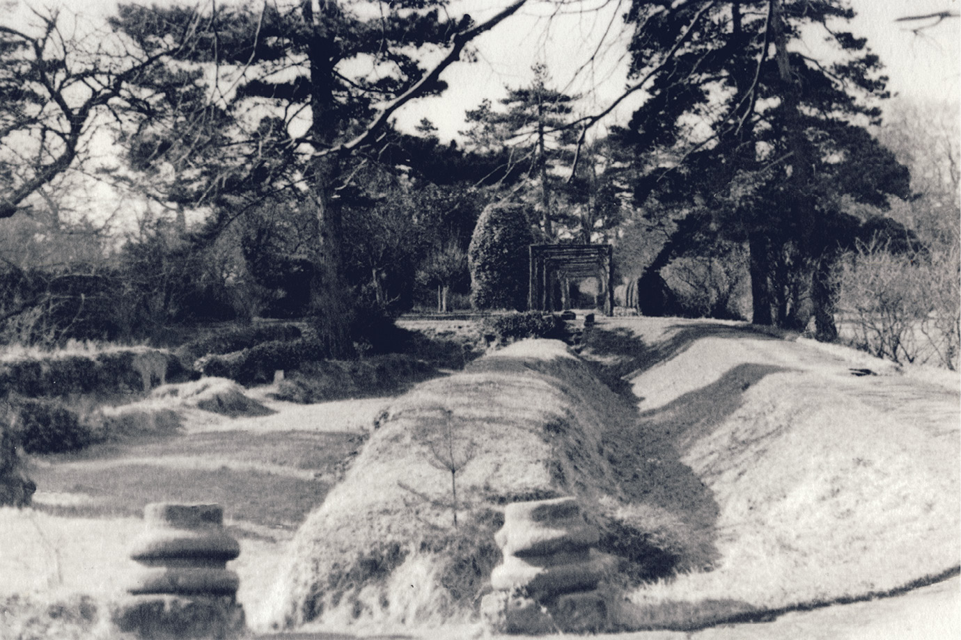 IMAGES: reproduced courtesy of Sir Andrew Lawson-Tancred