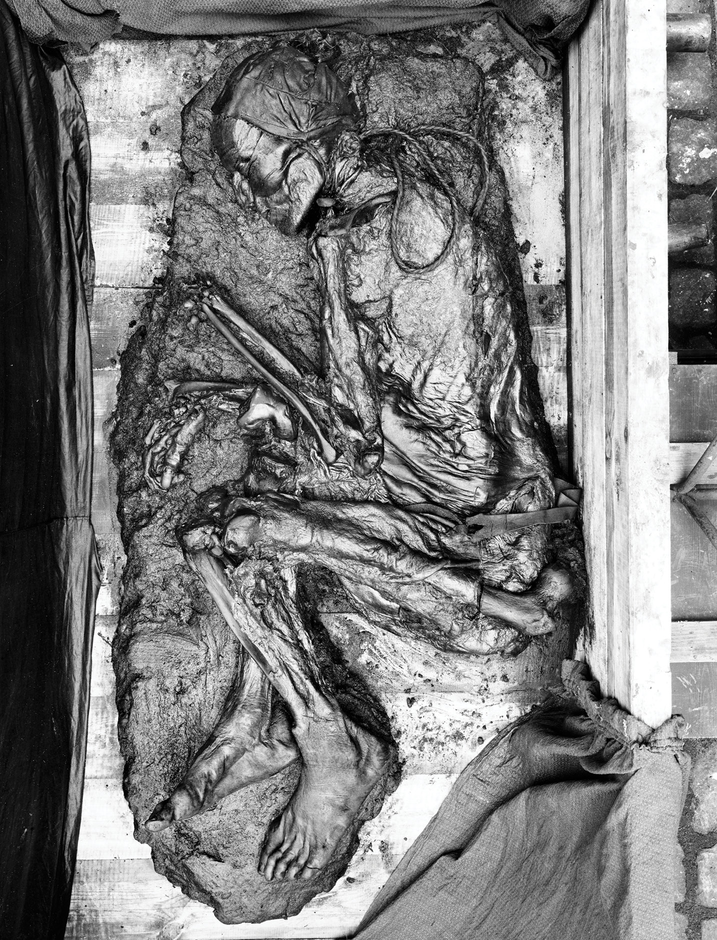 "RIGHT Tollund Man is one of Denmark's most famous bog bodies. This photograph shows how he looked when he was discovered in Jutland in 1950. While discussions of bog bodies are often dominated by their deaths, we can also understand much about the individuals' lives, thanks to their well-preserved remains. Tollund Man was around 30 years old at the time of his death and had stood 5'2"" tall. His last meal comprised barley, oats, venison, and wild weeds, and he was placed in the bog wearing a sheepskin leather cap."