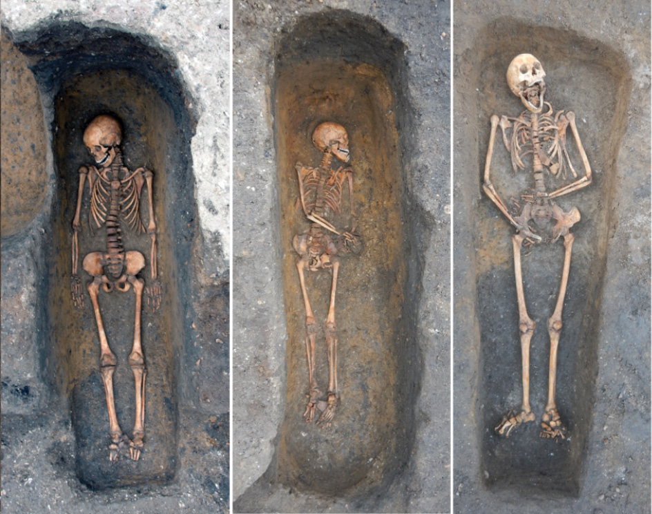 BELOW Three individuals buried in the chapter house of the Augustinian friary in Cambridge, whom the team identified as having had Plague at the time of their death.