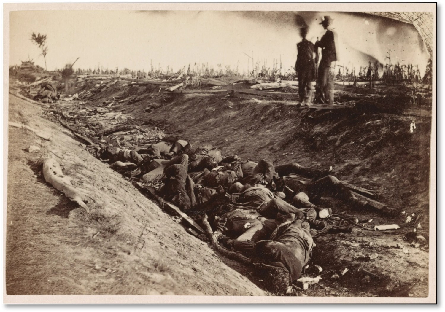 ABOVE Confederate dead in a sunken lane on the battlefield of Antietam grim testimony to America's bloodiest day. Lee was outnumbered two to one, but McClellan failed to coordinate attacks so as to overwhelm his line. Even so, Lee lost 25% of his effectives and was forced to