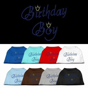 Birthday Boy Rhinestone Dog Shirt | The Pet Boutique