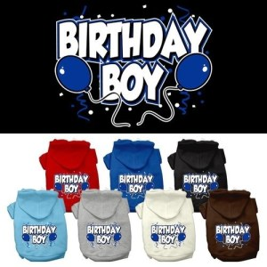 Birthday Boy Screen Print Pet Hoodie | The Pet Boutique