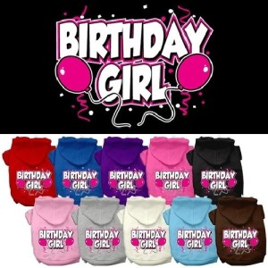 Birthday Girl Screen Print Pet Hoodie | The Pet Boutique