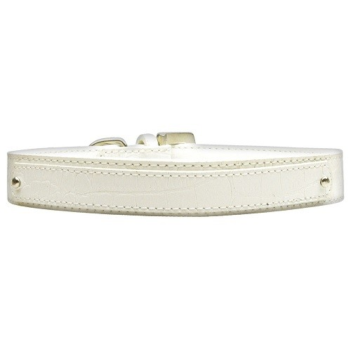 18mm Two Tier Faux Croc Dog Collar - White | The Pet Boutique