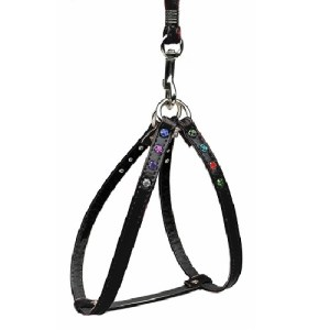 Confetti Step-In Dog Harness - Black | The Pet Boutique