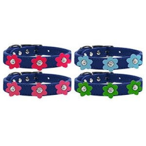 Flower Leather Dog Collar - Blue | The Pet Boutique