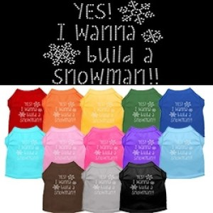 Yes! I Wanna Build A Snowman Rhinestone Dog Shirt | The Pet Boutique