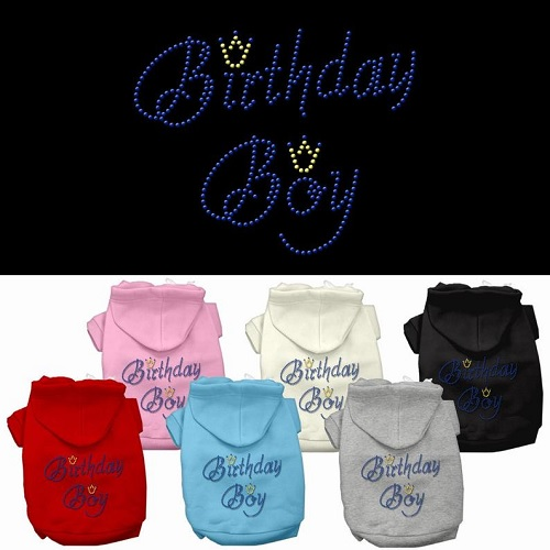 Birthday Boy Rhinestone Pet Hoodie | The Pet Boutique