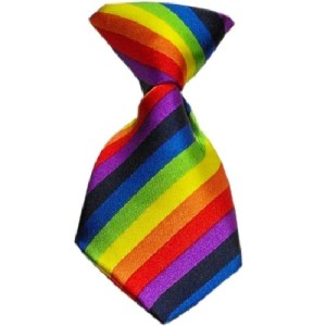 Rainbow Dog Necktie | The Pet Boutique