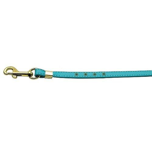 Color Crystal Dog Leash - Turquoise - Turquoise Stones - Gold Hardware | The Pet Boutique