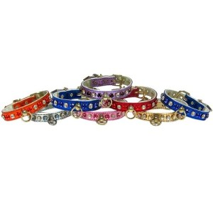 Metallic Deluxe Dog Collar | The Pet Boutique