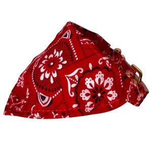 Red Western Bandana Collar | The Pet Boutique