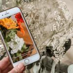 fonds d'ecran smartphone fleurs