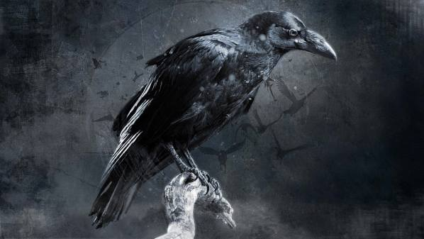 The Raven Speaks