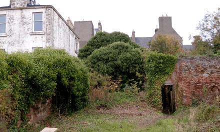 Regeneration of a Dunbar Backland