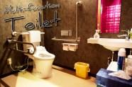 multi-toilet