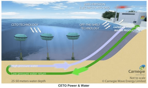 CETO wave energy convertor (photo: Carnegie)